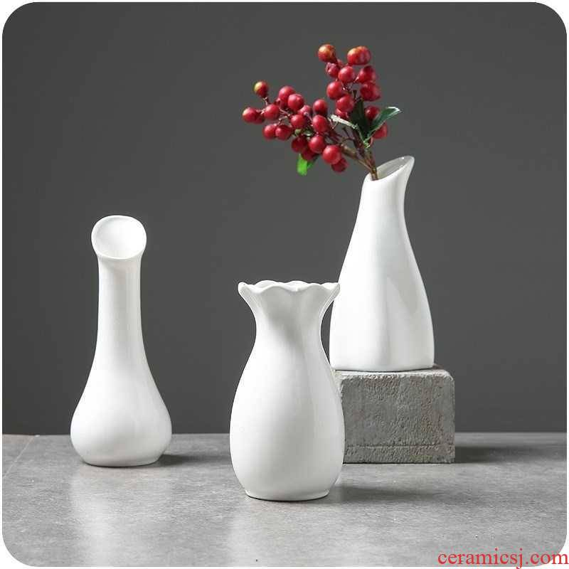 The Big foot small white porcelain vase hydroponic the plants home furnishing articles decorative dried flowers in the vase