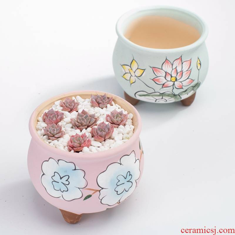 Korean manually draw large caliber jingdezhen through pockets tao more meat meat plant POTS ceramics special offer a clearance