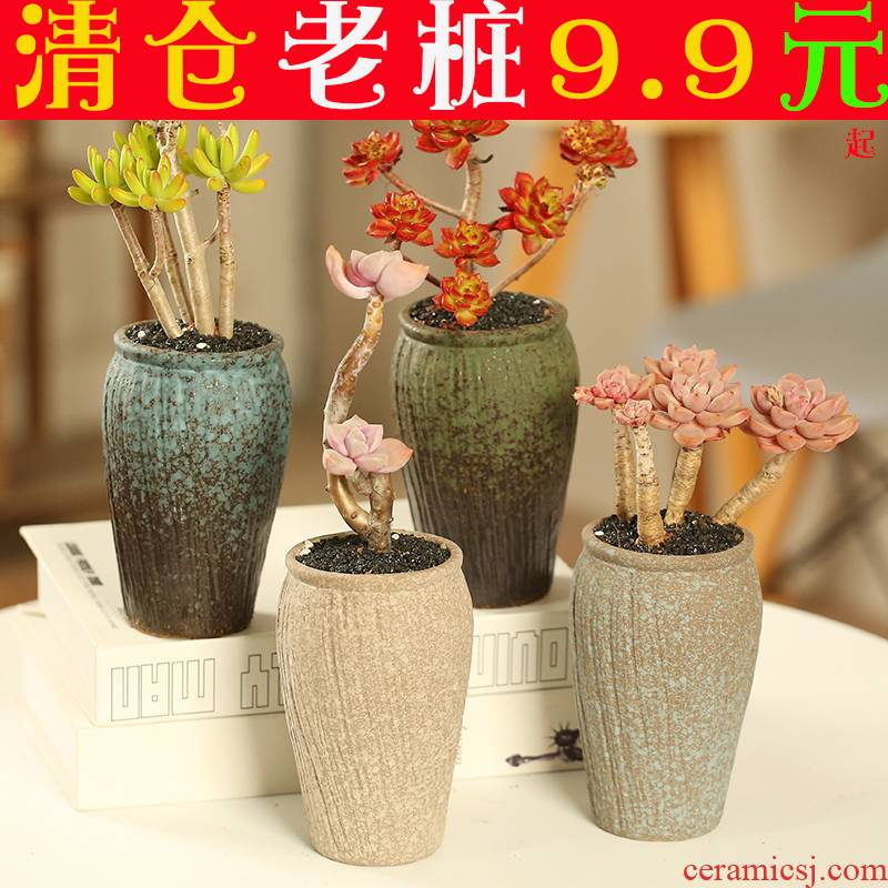 The Fleshy flower pot large old running the special offer a clearance individuality creative interior contracted diameter coarse pottery breathable meat meat the plants