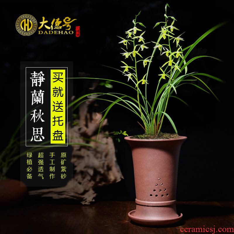 Yixing purple orchid flower POTS round purple clay POTS facilities. We use chunlan indoor buy basin which send tray with mud