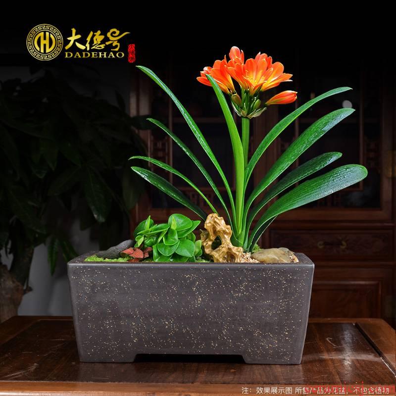 Rectangular bonsai pot yixing purple sand flowerpot green plant special combination potted pine needle five send banyan tree stump
