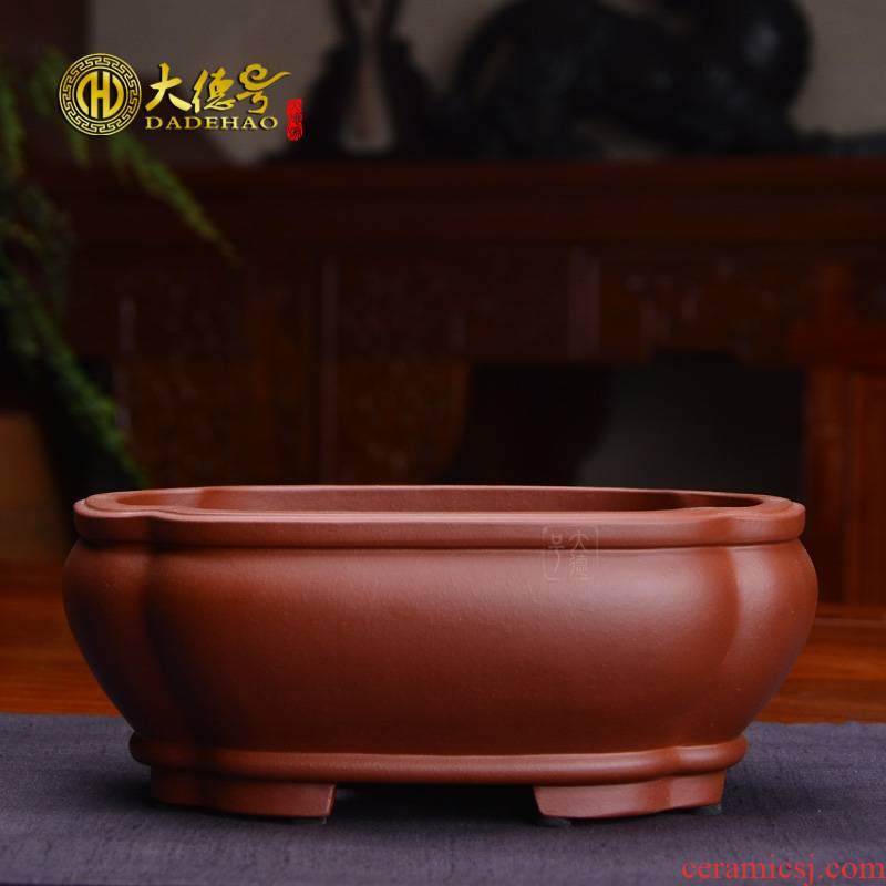 Haitang flowers purple sand flowerpot flower pot contracted fine ceramics, fleshy Chinese wind, green potted bonsai pot room