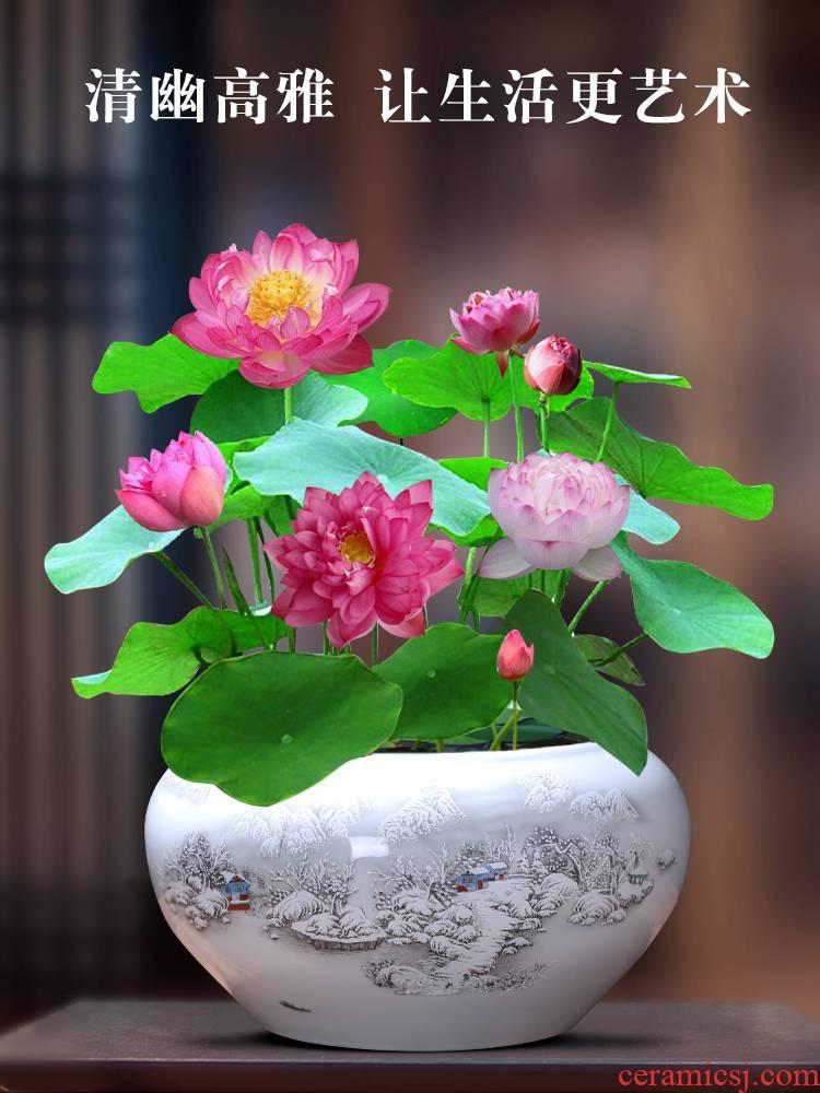 Jingdezhen ceramic aquarium trumpet large basin bowl lotus goldfish turtle cylinder water lily writing brush washer from fish bowl