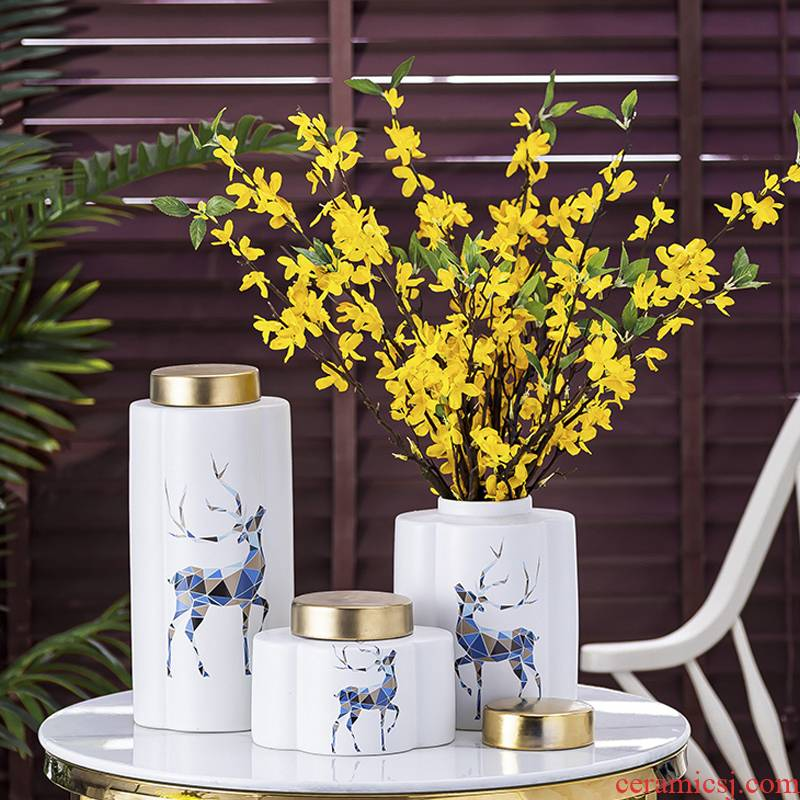 Light European - style key-2 luxury ceramic vase jar furnishing articles ins sitting room flower arranging storage I and contracted creative decorations
