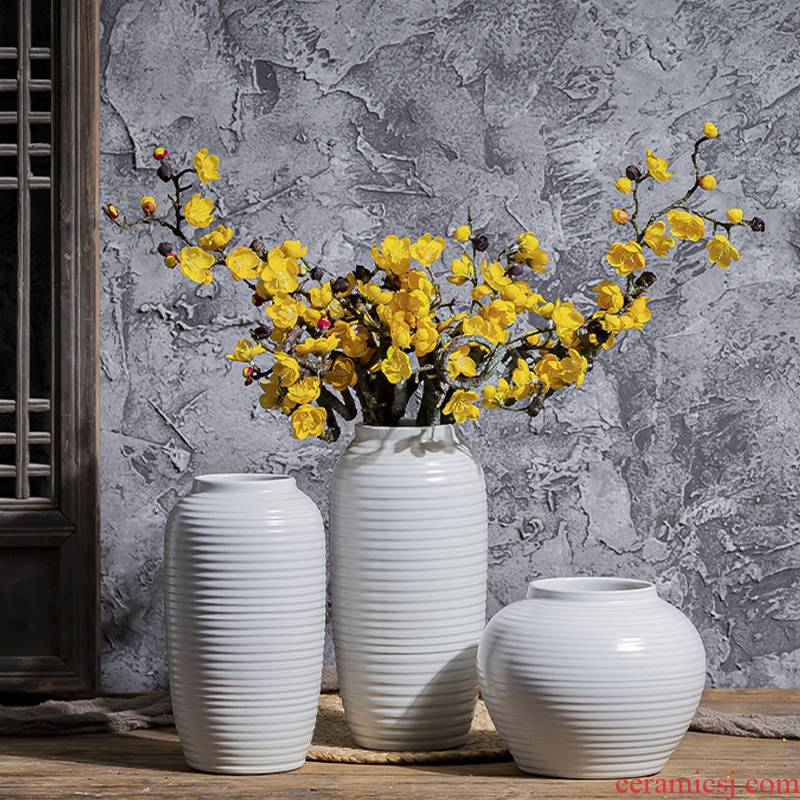 Contracted and I white mesa of creative art ceramic plug-in sitting room vase northern wind furnishing articles flowers water dried flowers