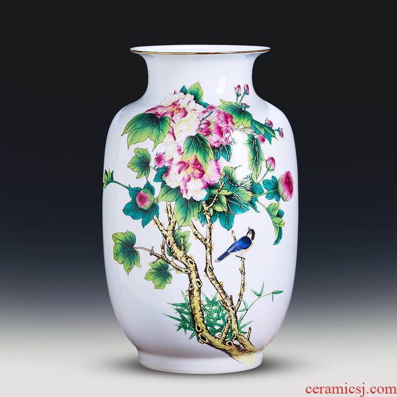 Jingdezhen ceramics powder enamel thin body new Chinese style household wealth vase furnishing articles flower arrangement sitting room adornment