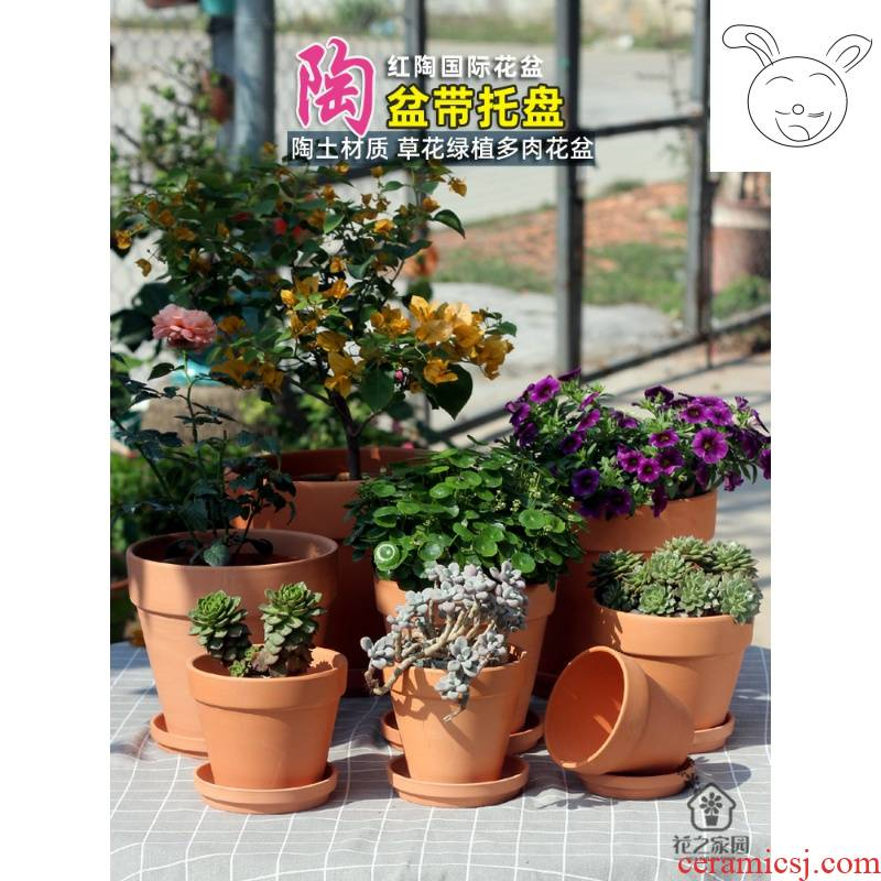 Red clay pot with other plant flowers, potted tray balcony indoor, fleshy ceramic breathable clay mud made of baked clay