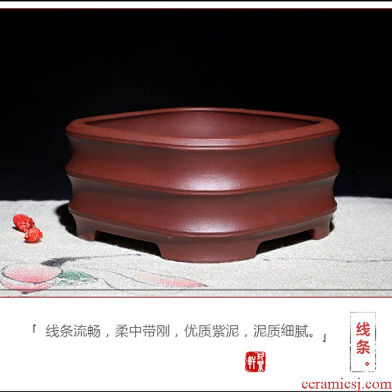 Yixing purple sand flowerpot high - quality goods square corrugated ceramic fleshy calamus potted bonsai big desktop office