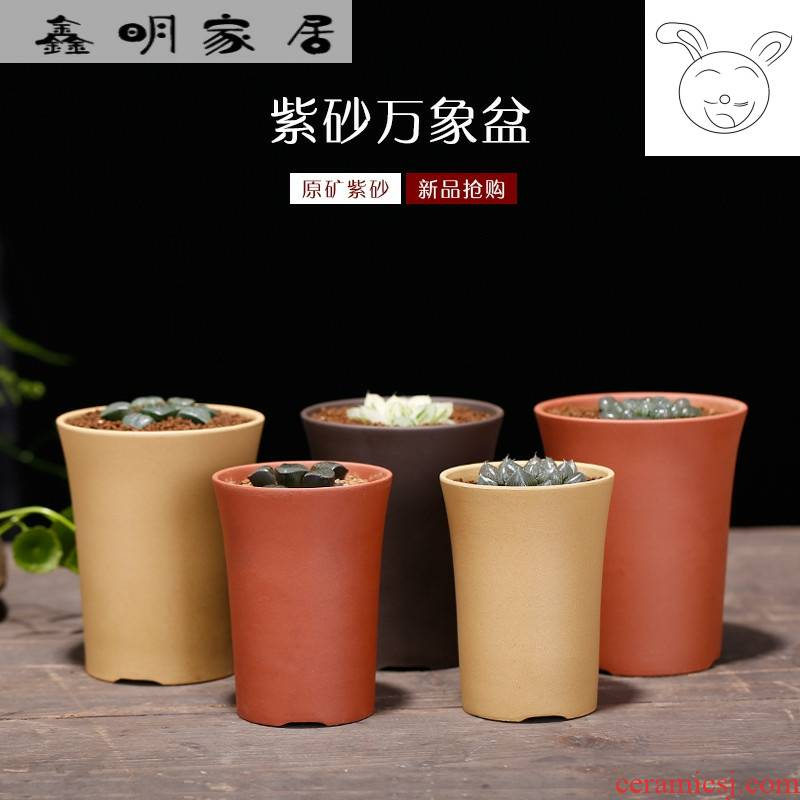 Violet arenaceous basin of vientiane yixing undressed ore large high curative value flowerpot more than twelve volumes of meat plant combination potted package mail