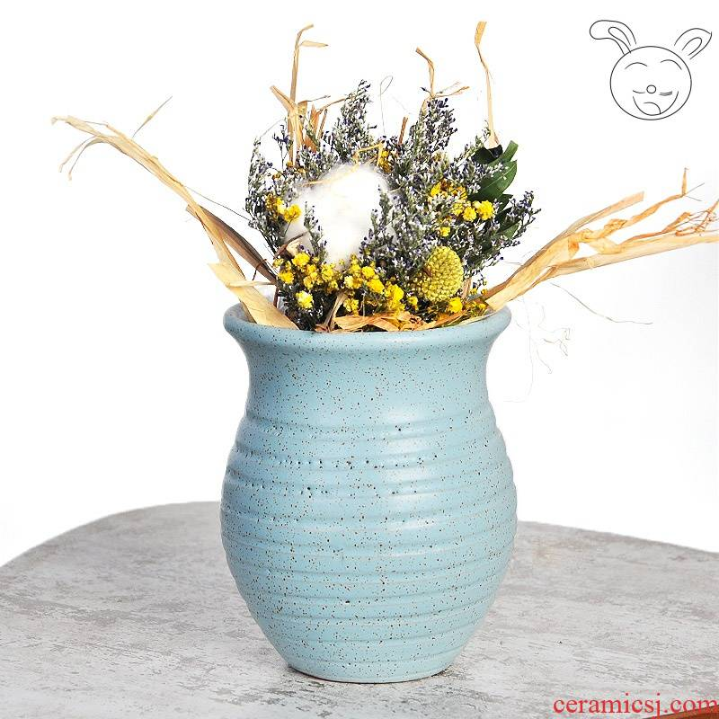 . Special coarse pottery flowerpot more meat large number of household ceramics earthenware jar green plant flower arranging dried vase meat meat the plants