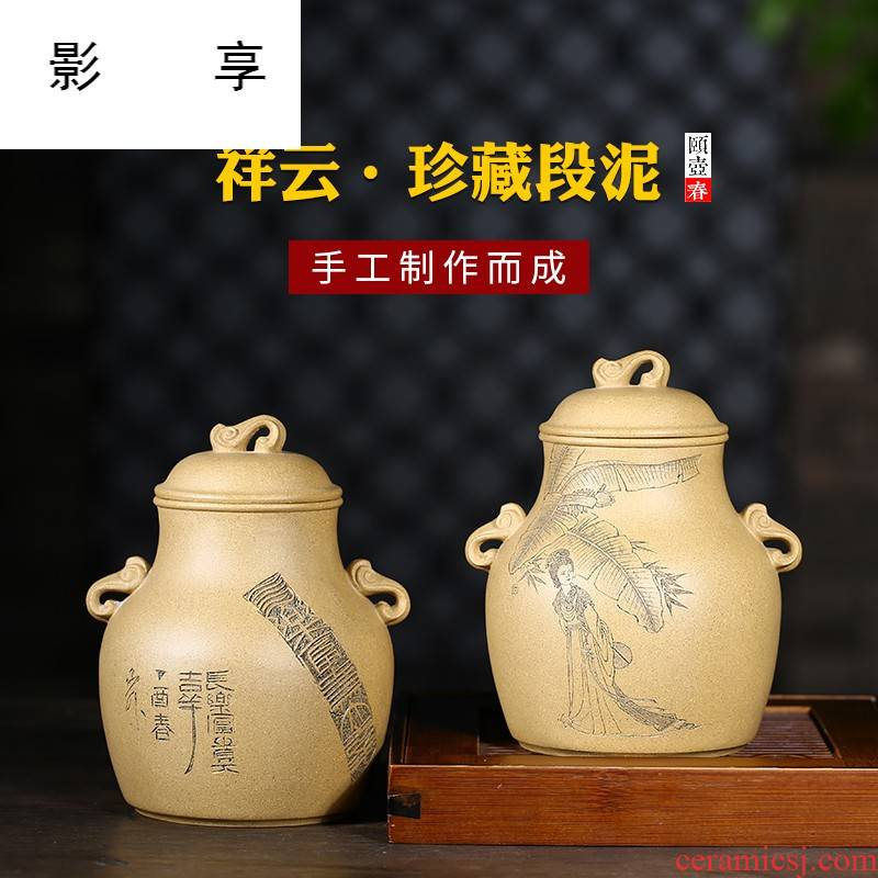 Shadow at yixing purple sand tea pot products by pure manual collection level ore section pu - erh tea POTS JH