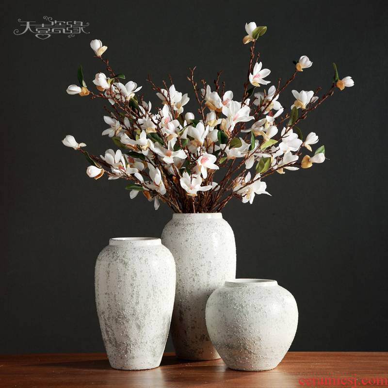 Nordic I and contracted, ceramic vases, pottery living room TV cabinet table dry flower arranging furnishing articles soft adornment flowers