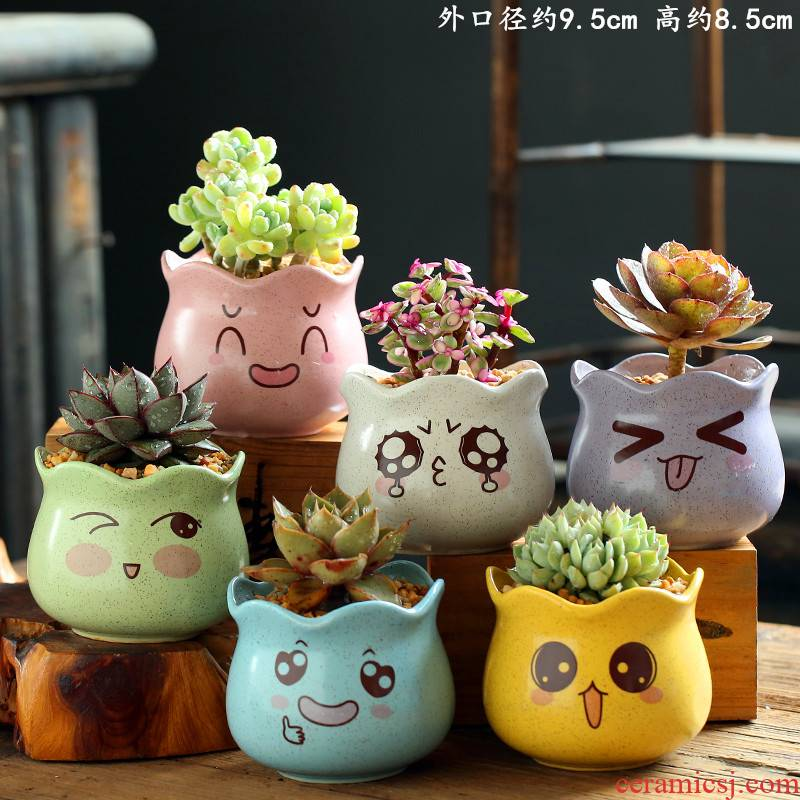 Fleshy flowerpot combination suit creative character coarse pottery breathable, lovely large meat meat the plants