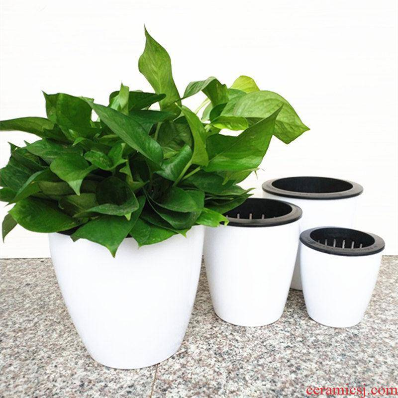 Upset with automatic suction lazy basin of water ridging from other flowers, potted imitation ceramic flower POTS, fleshy plastic flower POTS
