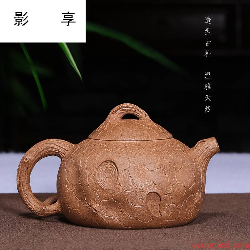 Shadow at yixing are it by pure manual teapot tea undressed ore old mud for spring teapot HM
