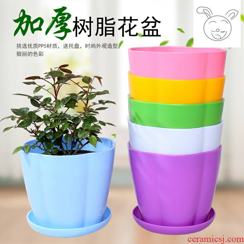 Increasing large money plant flower pot pot plastic imitation ceramic resin creative indoor green plant fleshy flower pot tray