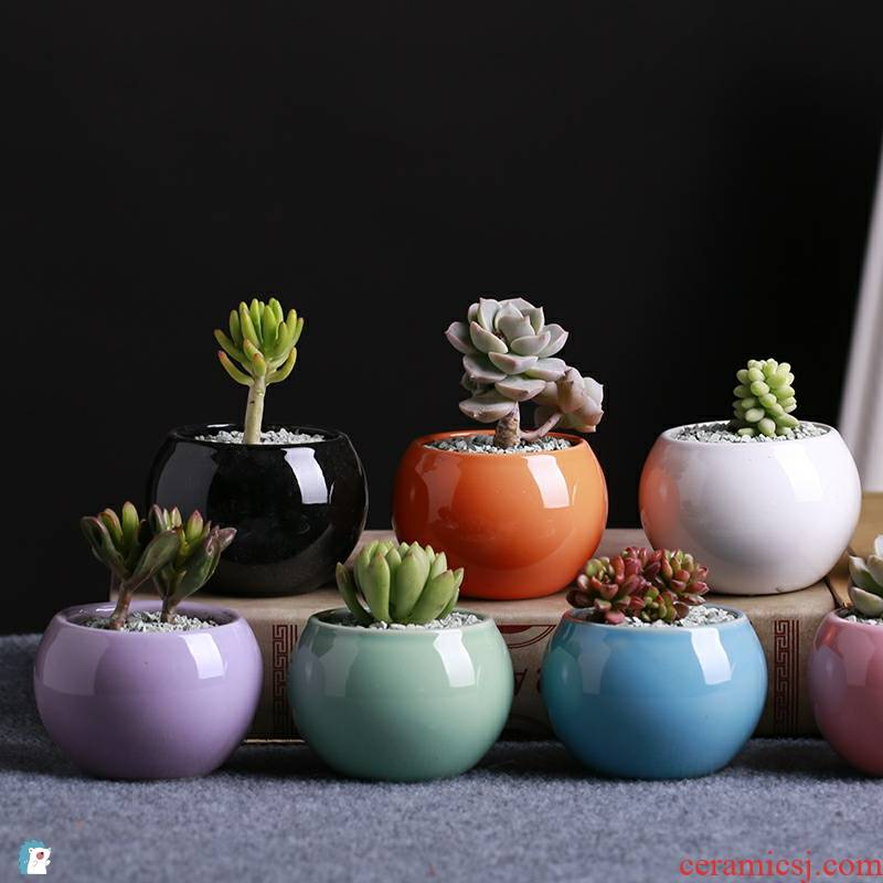Ceramic flower pot small ball meaty plant flowers, potted flower POTS round white porcelain white color miniature creative