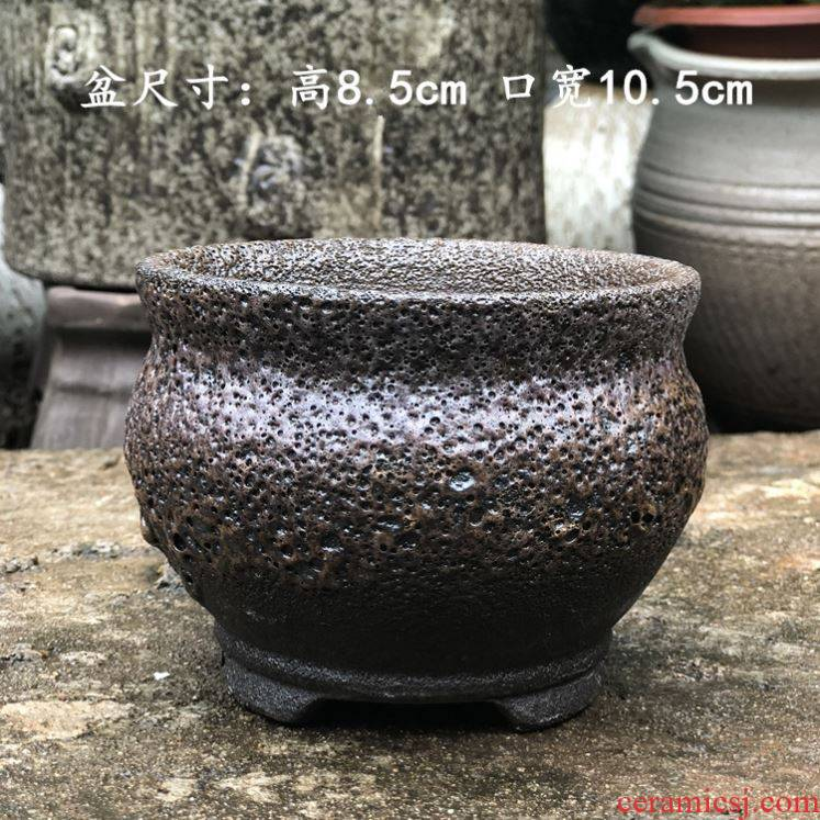The new special offer a clearance violet arenaceous meat meat meat ceramics coarse pottery creative contracted large diameter flower pot in move