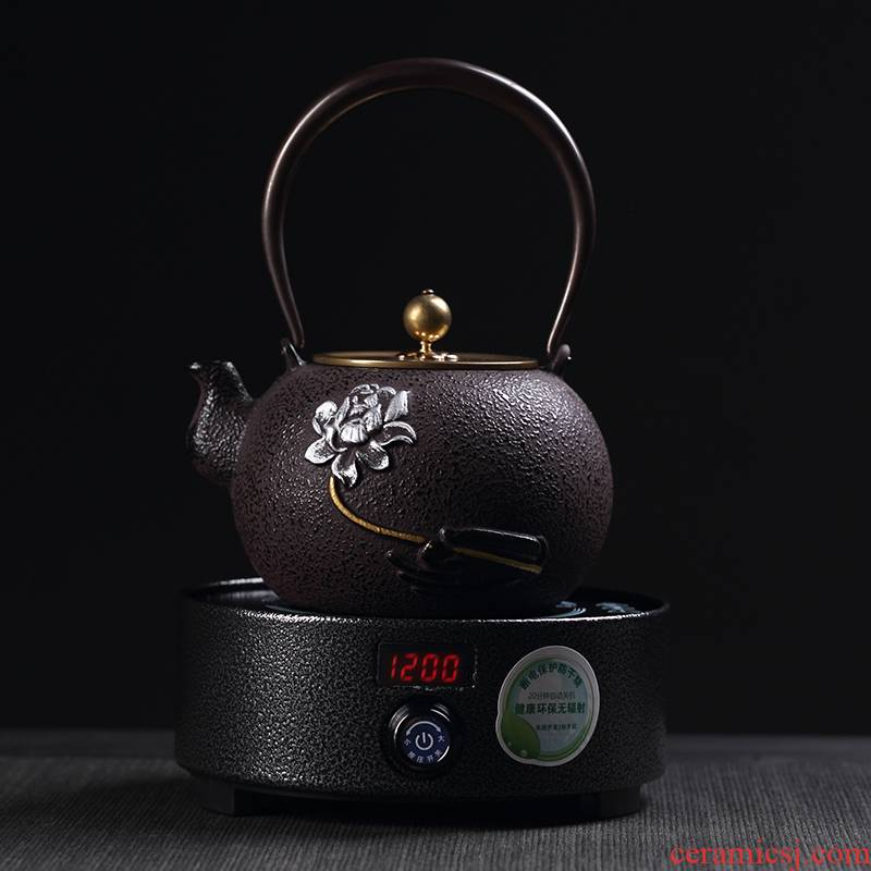 Craft brother pot electricity TaoLu suit Japanese iron teapot tea health household iron kettle boiling kettle