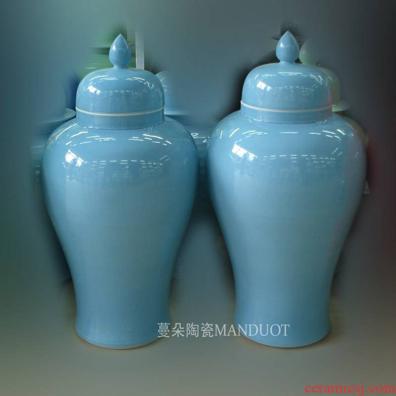 Jingdezhen avant - garde contracted general can display the home general as cans with the general pot decorate a company