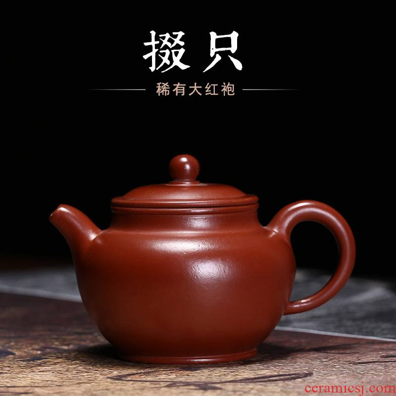 Yixing undressed ore it zhu clay pot pure manual mud painting Duo pot pot applique nameplates, kung fu tea teapot
