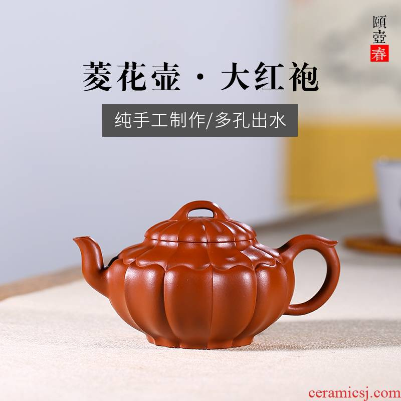 Shadow at yixing are it by pure manual fine ore mud dahongpao jin zhu wen ling flowers JH 240 c