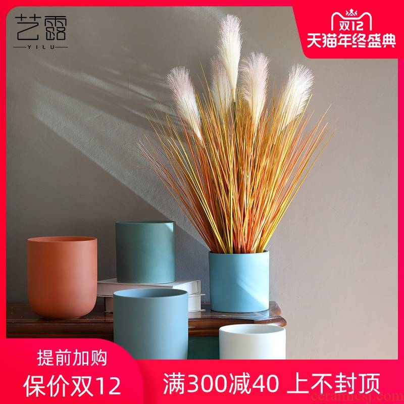 Nordic I and contracted marca dragon fleshy flowerpot ceramic vase of large diameter reed money plant butterfly orchid flower POTS