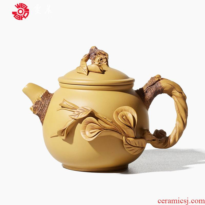 Shadow enjoy imitation wood are it Chen Dongzhu famous tea is purple sand teapot kung fu tea set piece of clay ore single pot of Y