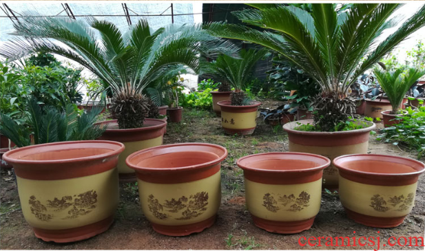 Special ceramic flower pot big yards ceramic basin air clearance household purple orchid outsize red clay