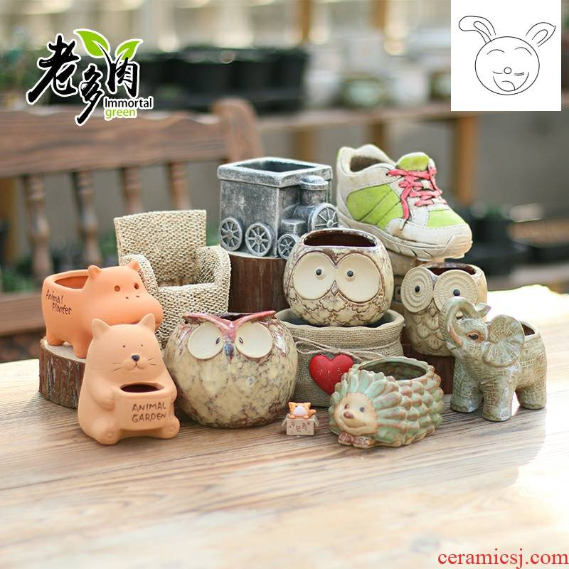 Meaty plant pot cartoon green the plants ceramic flowerpot more meat contracted individuality creative potted flower pot in ceramics