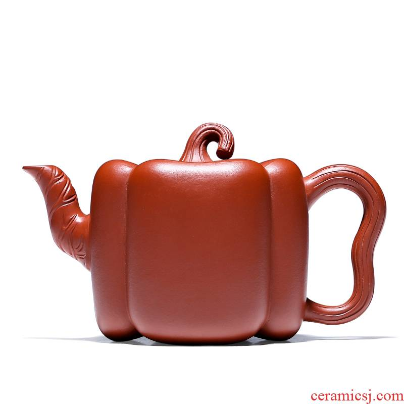 Shadow at yixing are it for authentic Chinese teapot pure checking flower implement jin wen zhu mud GYT pepper pot