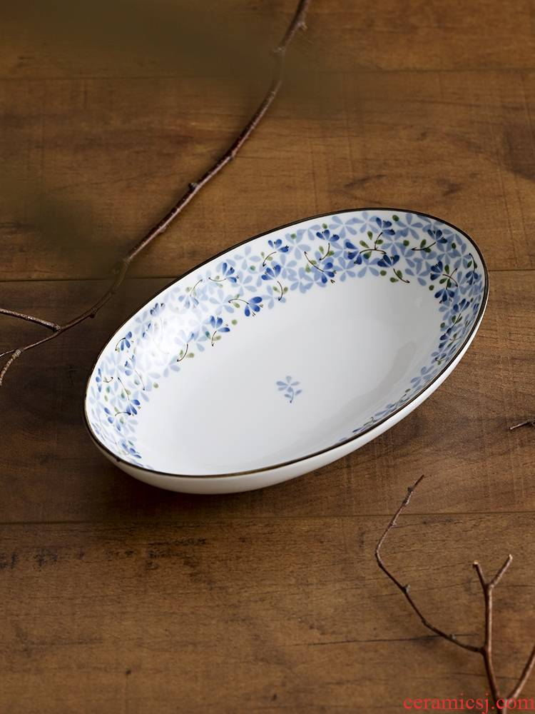 Qiao mu LH creativity Japanese fish grilled fish dish plate big elliptical plate ceramic disc household deep dish plate under the glaze color