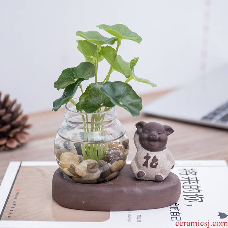 To embellish the creative glass furnishing articles mini hydroponic desktop small sitting room tea table money plant flower vases, pottery