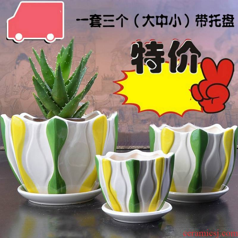 Ceramic POTS brilliantly coloured purple sand permeability meaty plant combination large platter old running the green, the plants potted flower pot