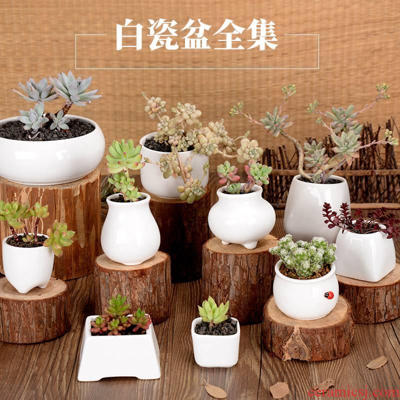 Fleshy ceramic square desk side basin large Fleshy potted contracted creative white porcelain pot round flower pot