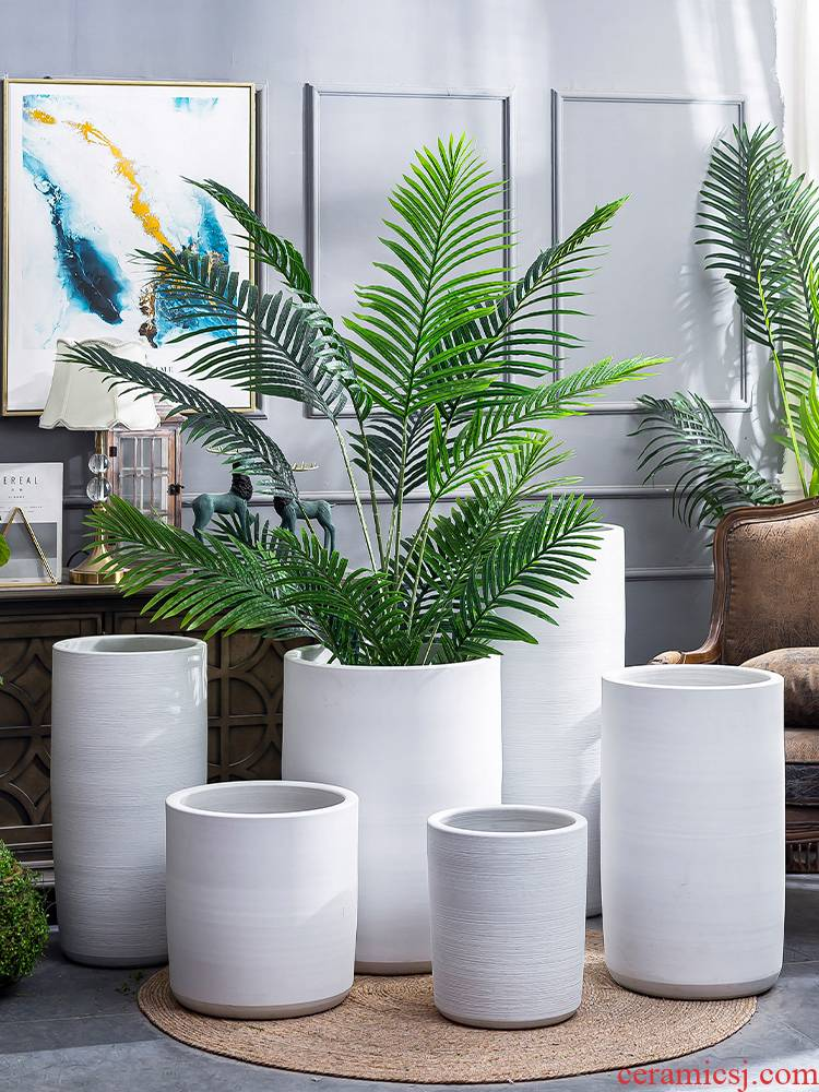 I and contracted large pot villa interior furnishing articles ceramic large ground the plants green plant white vase