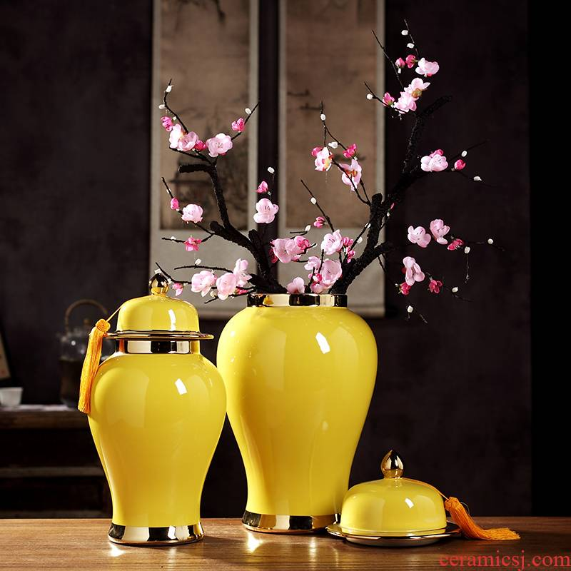 Jingdezhen new Chinese wine cabinet mesa general large vase can of the sitting room porch ceramic flower arranging feng shui furnishing articles