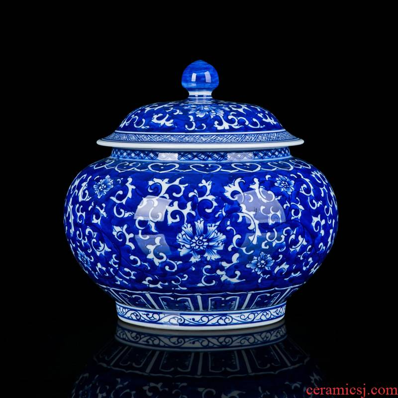 Jingdezhen blue and white porcelain tea pot seal tank general household furnishing articles accessories checking ceramic small jar