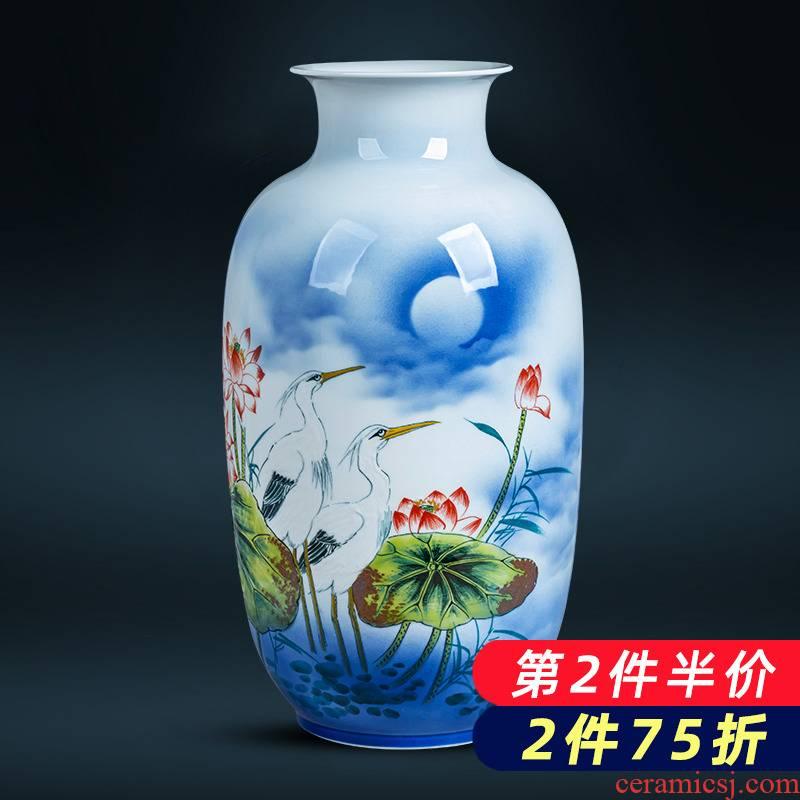 Jingdezhen ceramics hand - made lotus flower vase large floor living room TV ark home flower adornment furnishing articles