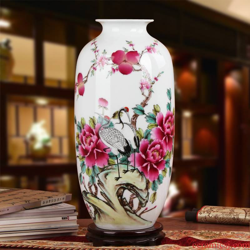Famous Xia Guoan high - grade gift porcelain vase hand - made works of jingdezhen ceramics powder enamel wealth and longevity