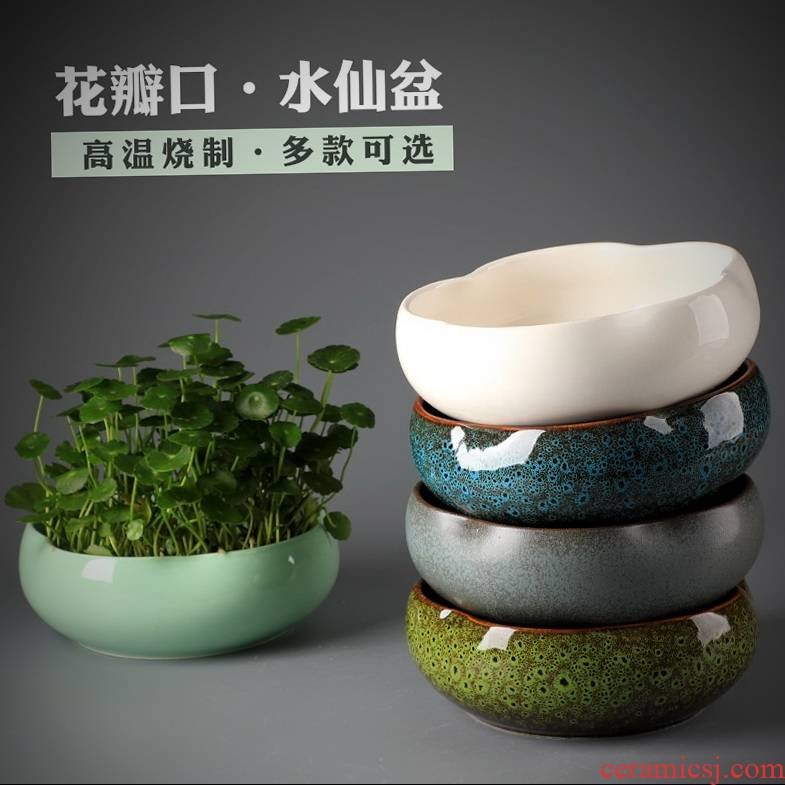 Daffodils special pot hydroponic flower pot leaf lotus copper money grass Daffodils creative large other nonporous ceramics
