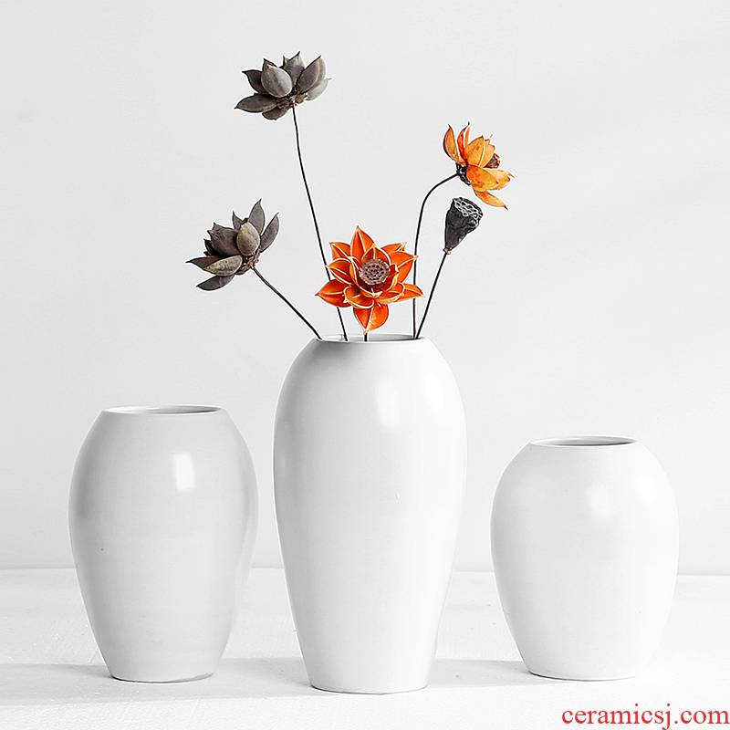 Ceramic vases, flower arrangement sitting room dry flower is placed in the Nordic I and contracted household adornment light excessive TV cabinet table