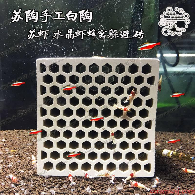 Breeding from crystal fire honeycomb ceramic brick natural shrimp very alien nest young shrimp protect Sue shrimp cabin