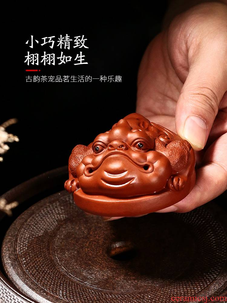 Yixing creative move maxim spittor zhu, violet arenaceous mud small tea pet play color fine furnishing articles tea to keep