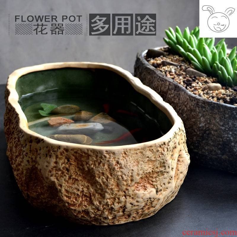 Small desktop creative imitation stone, fish tank office cylinder basin of mini micro ecological landscape ceramic aquarium water lily