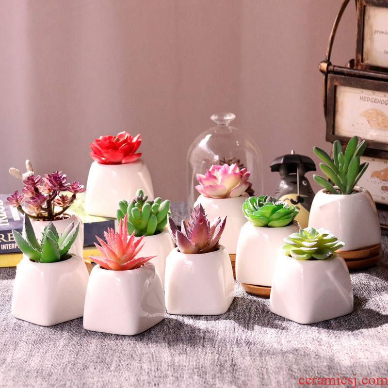 False flower small potted plant simulation, fleshy False fleshy white ceramic flower pot furnishing articles home office desktop