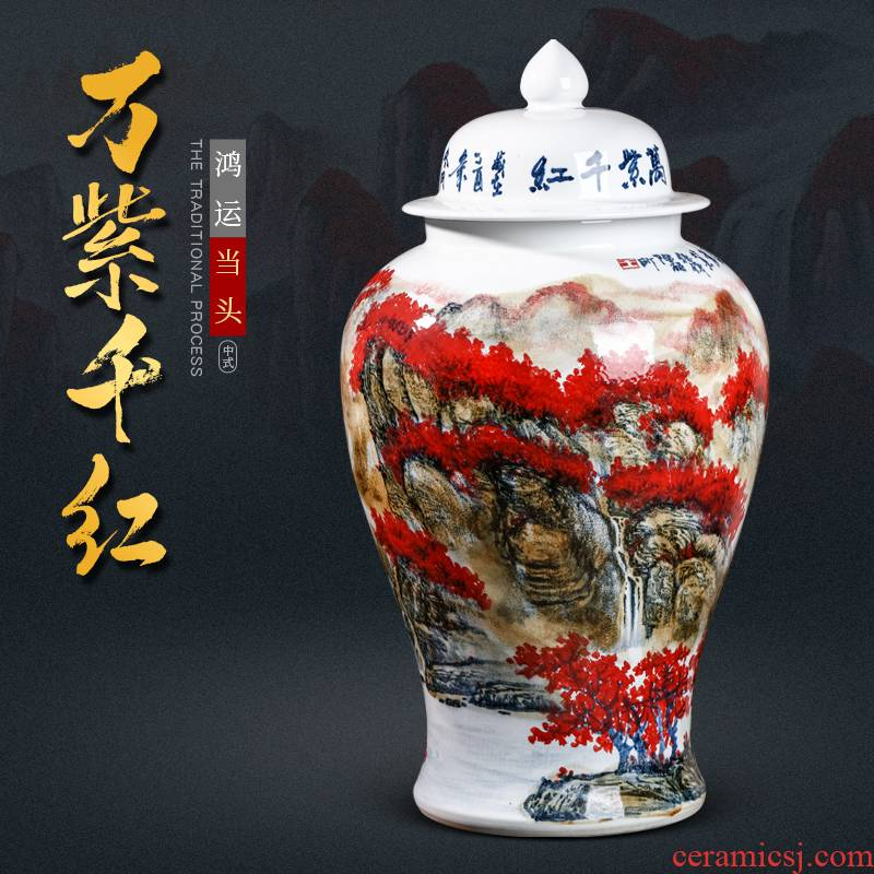 Chinese wine sitting room adornment is placed famous jingdezhen ceramics hand - made the general pot of large storage tank