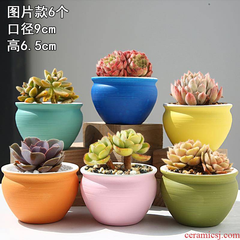Meaty plant combination potted meat meat flowerpot suit creative move retro ceramic breathable small basin