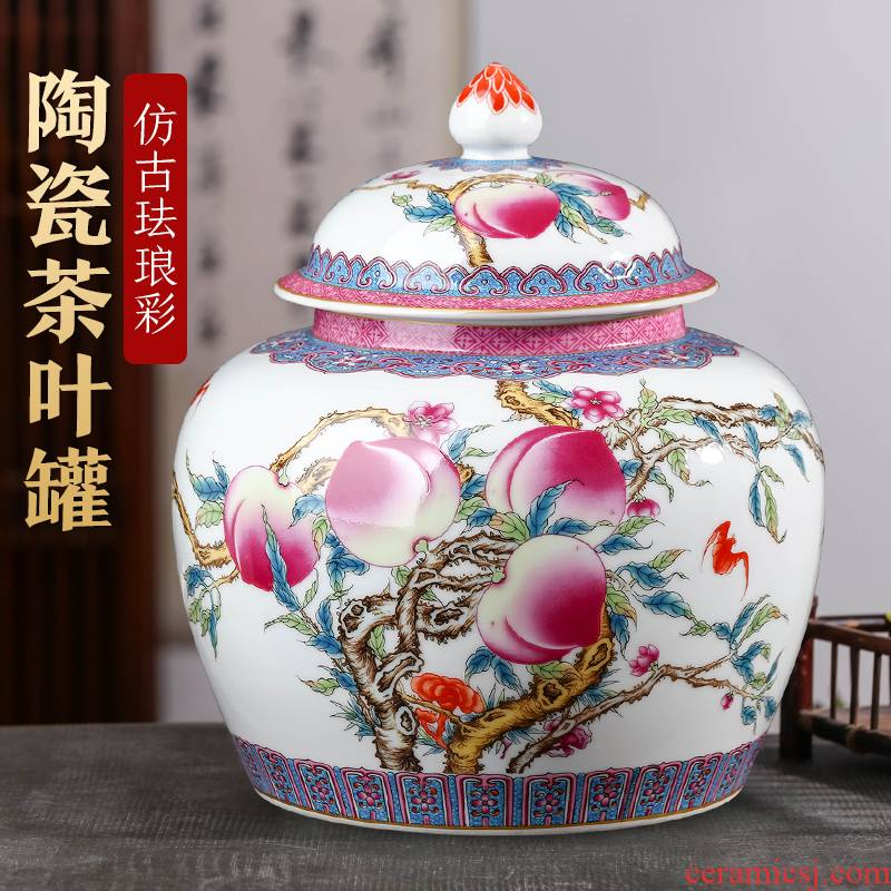 Jingdezhen ceramic tea pot household size restoring ancient ways with cover moistureproof pu - erh tea and tea sealed as cans of storage tank