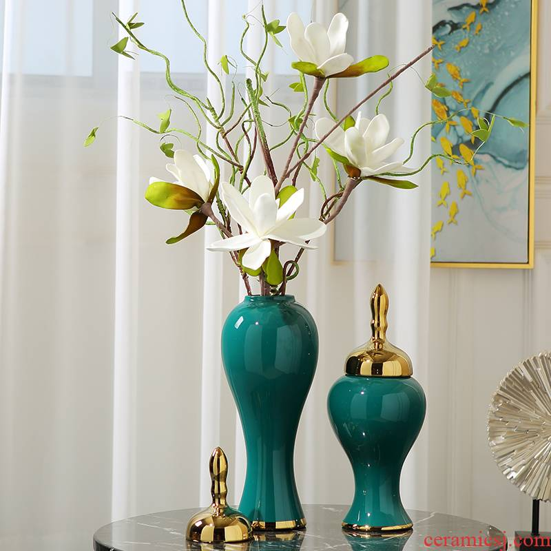 Modern light key-2 luxury ceramic vase is placed between dried flowers flower arrangement table example sitting room TV ark, soft outfit household act the role ofing is tasted